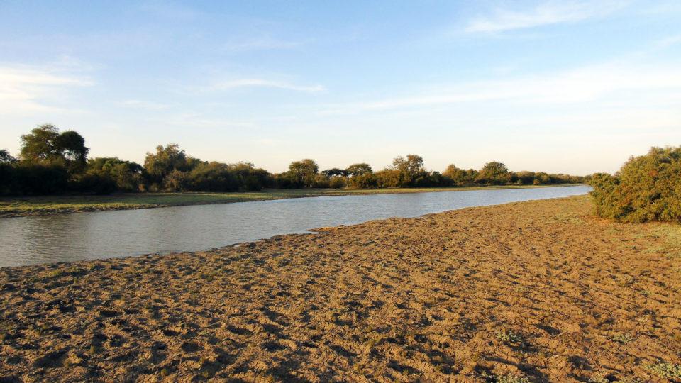 Une vue de la rivière Bahr Salamat. Crédits photo: Yacoub